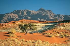 Profiter d'un circuit en Namibie pour visiter des endroits exceptionnels