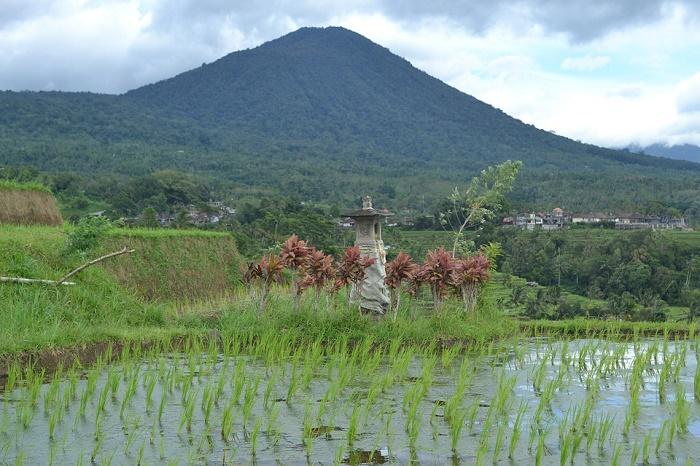 Les sites à visiter pour un voyage à Bali.